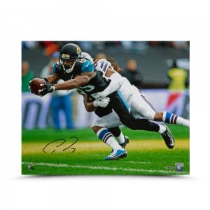 Allen Robinson Autographed Red Zone Reach 16 x 20
