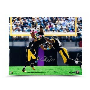 "Allen Robinson Autographed ""Smoked Over the Middle"" 16 x 20 Photo"