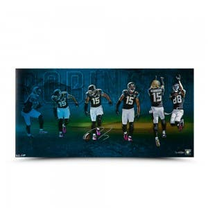 Allen Robinson Autographed TD Catch Celebration 30 x 15