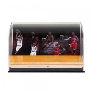 Chicago Bulls 2016-17 Defenders of the Hardwood Game-Used Floor Piece Curve Display Case
