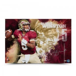 "Jameis Winston Autographed ""College Sensation"" 16 x 24 Photo"
