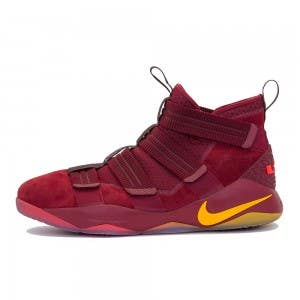 "LeBron James Game Worn ""LeBron 13 Elite"" Shoe (Vs. Indiana Pacers)"