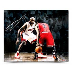 LeBron James vs Derrick Rose