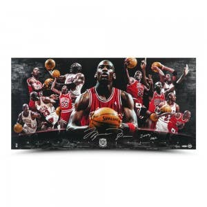 Michael Jordan Autographed & Inscribed Hall of Fame Collage 36x18