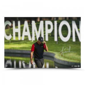 "Tiger Woods Autographed ""The Tie"" 24 x 16"
