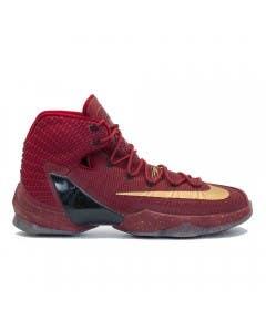 "LeBron James Game Worn ""LeBron 13 Elite"" Shoe (Vs. Golden State Warriors)"