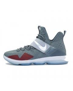 "LeBron James Game Worn ""LeBron 14"" Shoe (Vs. Sacramento Kings)"