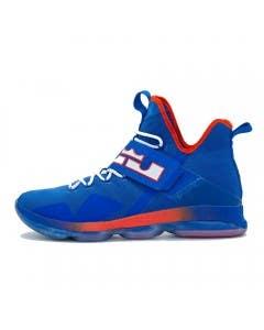 "LeBron James Game Worn ""LeBron 14"" Shoe (Vs. Detroit Pistons)"